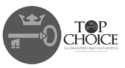 logo_top-choise